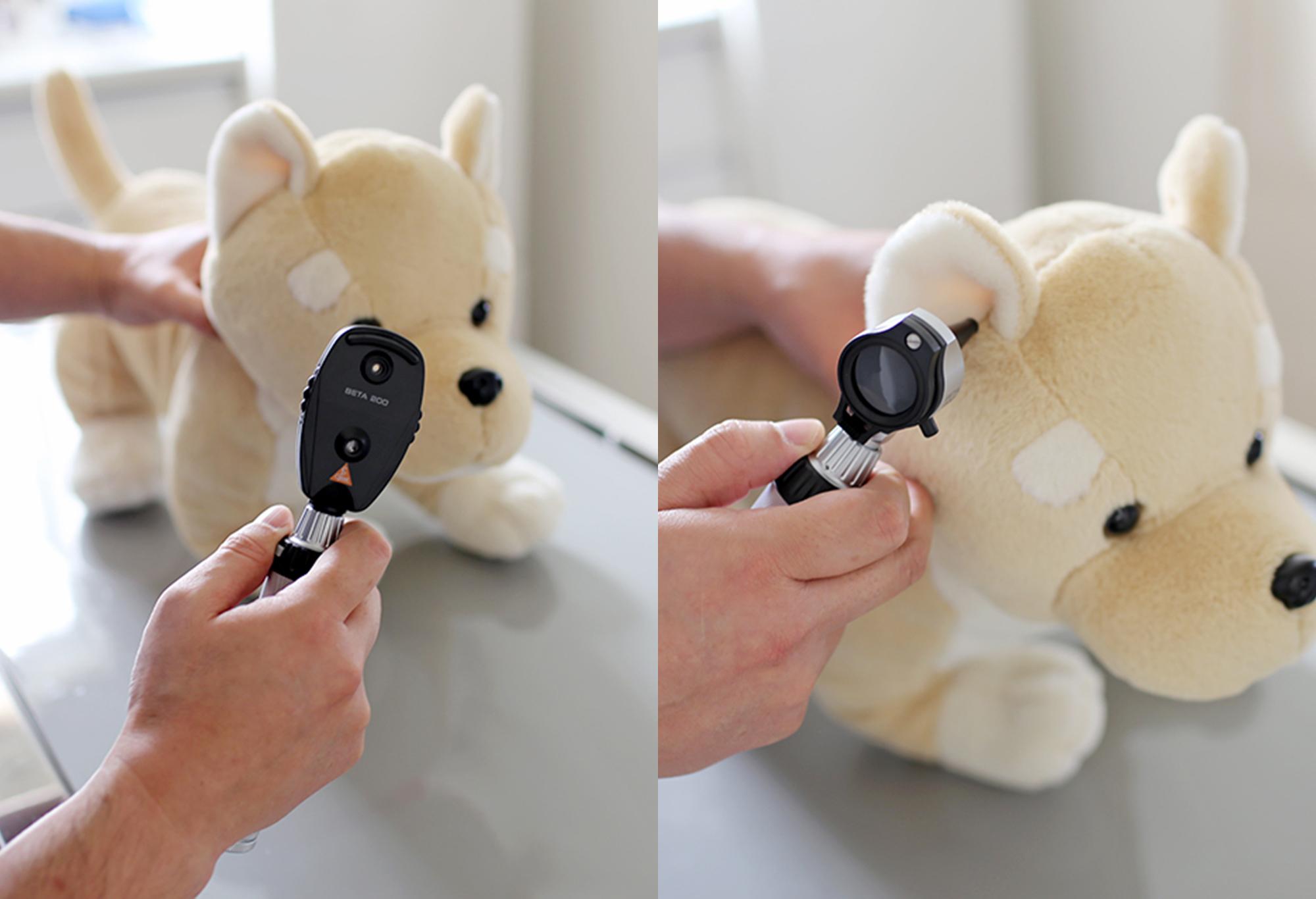 【検眼鏡(左)】 【検耳鏡(右)】<br /> 目や耳の中を詳しく診断するための装置です。